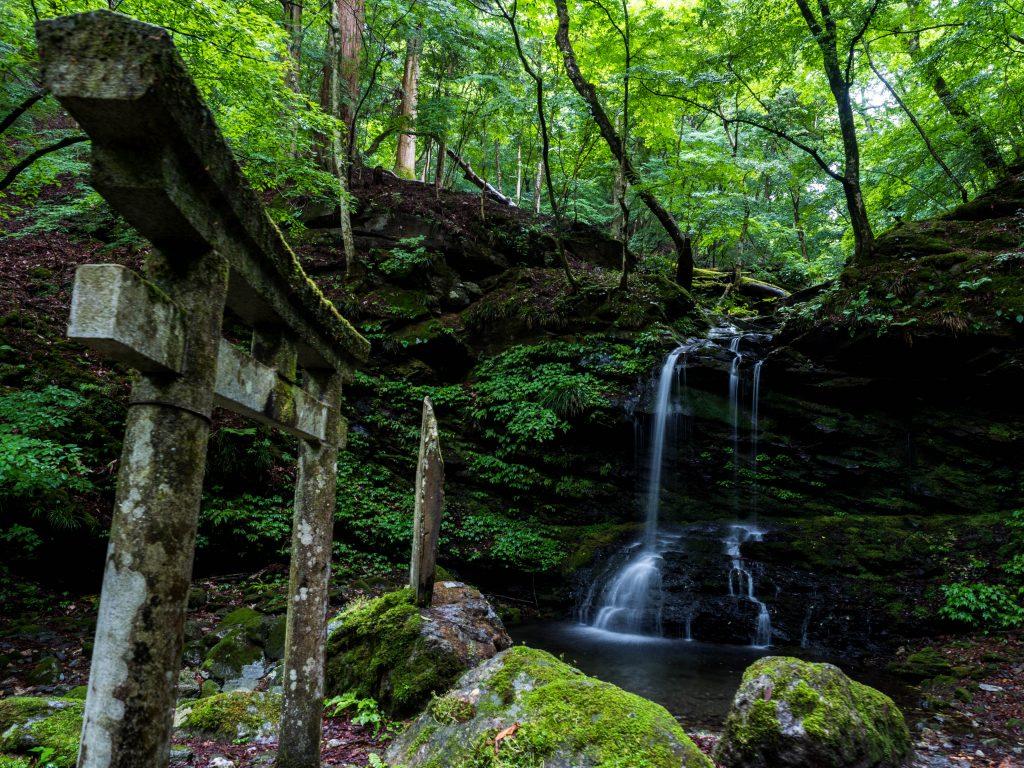 鳥居の奥に滝がある森