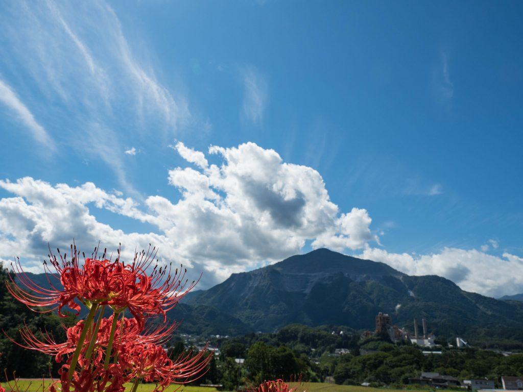 棚田から見る彼岸花と武甲山