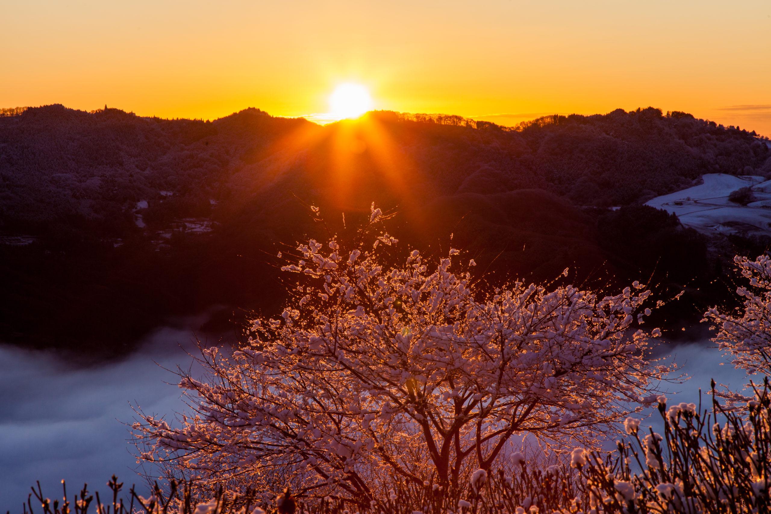 秩父雲海と日の出